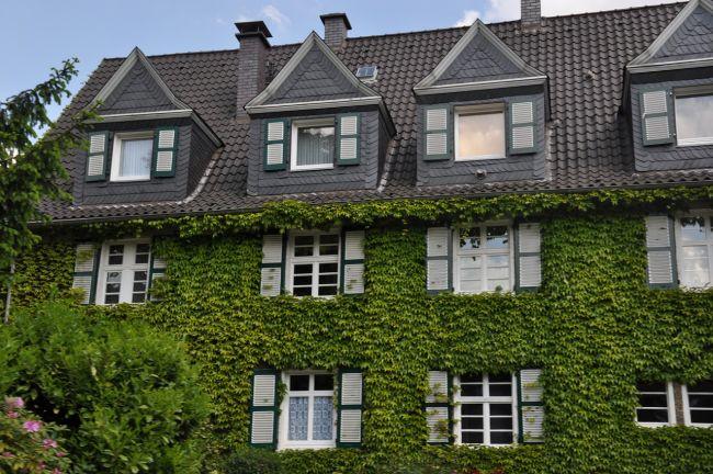 Il giardino verticale caratteristiche e benefici ambientali for Giardini verticali milano