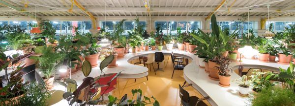 Coworking sostenibile Second Home a Lisbona