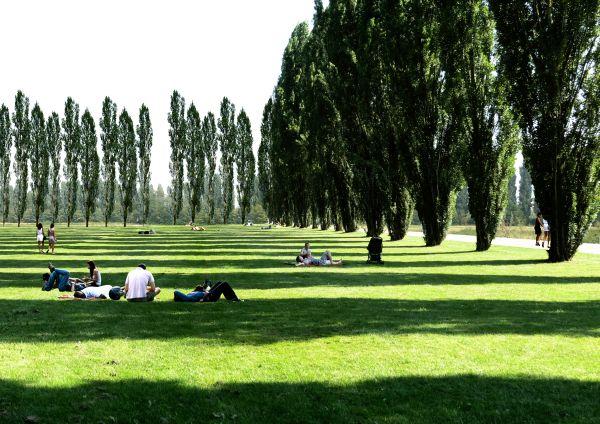 Render del grande parco urbano che sorgerà nella zona ovest di Milano