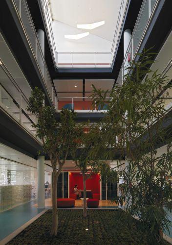 Interni con alberi del complesso Green Life di Crèdit Agricole a Parma