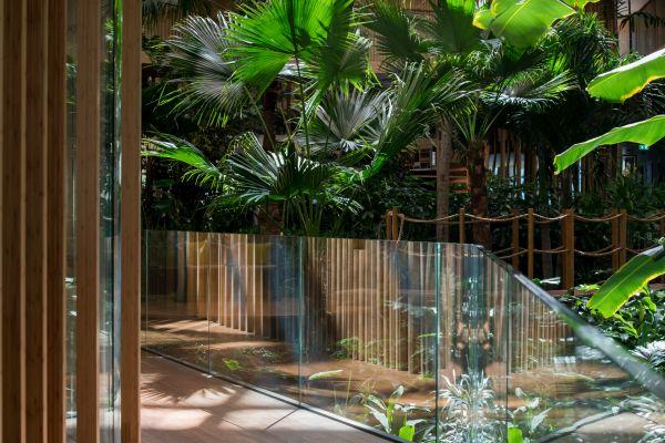 Il giardino tropicale situato all'interno dell'Hotel Jakarta di Amsterdam