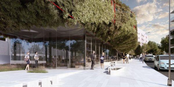 La nuova biblioteca di Madrid ricoperta dalla pianta Virginia rampicante