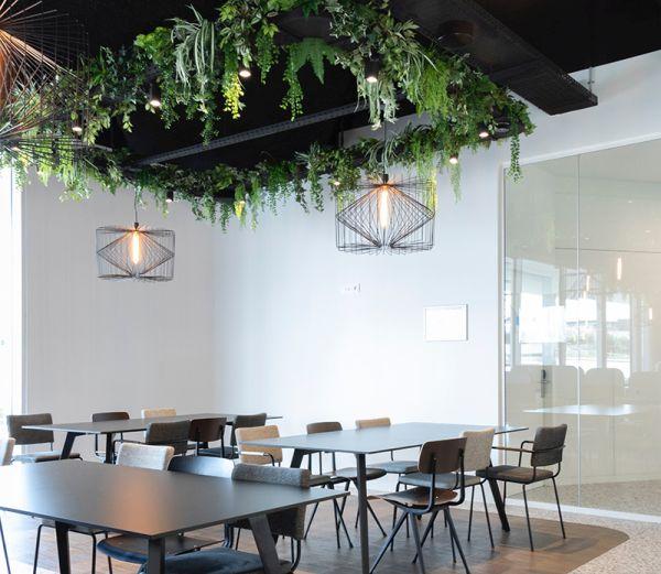 Vantaggi di inserire le piante negli ambienti di lavoro