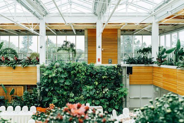 Installare una parete verde negli ambienti interni
