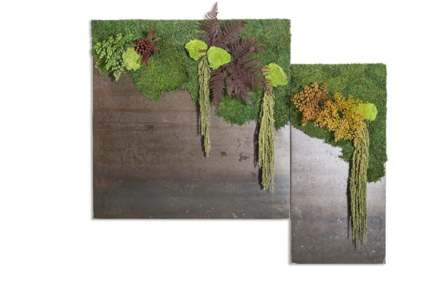 i quadri vegetali per arredare casa