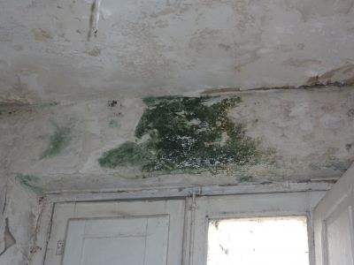 Umidit e muffe cause e soluzioni - Come risolvere il problema dell umidita in casa ...