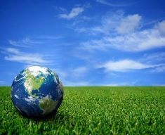 Green practices e sostenibilità ambientale come chiave per il successo