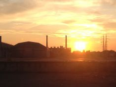 Strategie di rigenerazione per manufatti tutelati in aree brownfield: il caso Bormioli Rocco a Parma