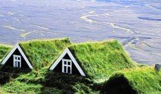 Tetti verdi: spazi eco friendly in città