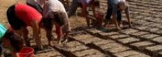 Costruire in terra cruda: una scelta sostenibile