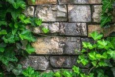 Creare mattoni naturali e da riciclo per l'edilizia green