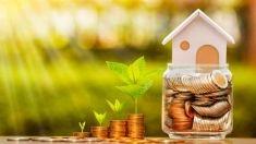 Con gli edifici verdi la reddittività sale
