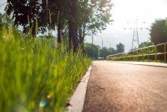 Clima, le infrastrutture verdi per il recupero delle acque piovane
