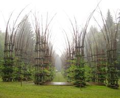 Natura e costruzioni: cosa sono le architetture vegetali
