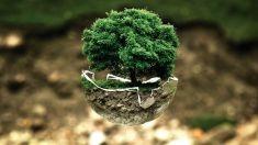 Ambiente, paesaggio e attività umana: lo scopo delle valutazioni ambientali