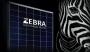 Zebra, il nuovo modulo fotovoltaico Futurasun con tecnologia IBC