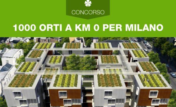 Progettazione di orti urbani su lastrici solari e terrazzi di Milano