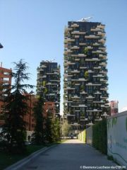 Il Bosco Verticale vince il Best Tall Buildings Awards 2015