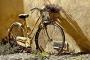 Approda alle Camere lo schema di decreto sulla mobilità sostenibile