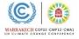 La COP22 si impegna per il futuro di clima e ambiente