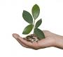 Lazio Grren Economy, sostegno a ricerca e innovazione