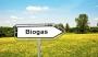 Il biogas: una tecnologia verde per produrre energia termica ed elettrica
