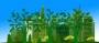 Proposte Rete Irene per migliorare l'ecobonus per il 2018