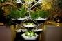 Living Farming Tree, Orto urbano indoor sostenibile ed efficiente