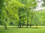 Il Capitale Naturale e la sua integrazione nei processi decisionali politici