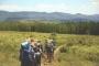 Green anche in vacanza: l'ecoturismo e le strutture sostenibili