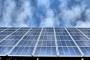 Dal batterio Escherichia Coli l'energia per le celle fotovoltaiche