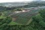 Hawaii verso il 100% di rinnovabili grazie a un nuovo progetto di fotovoltaico + accumulo