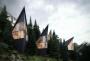 Case sugli alberi sulle Dolomiti: un'esperienza unica, immersi nella natura