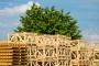 Riciclare legno, una pratica green che crea lavoro. I dati del consorzio Rilegno