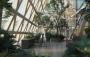 A Futian Un grattacielo urbano che respira per dare nuova vita a Shenzhen