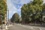 A Londra La più grande parete verde in Europa assorbirà 8t di inquinamento atmosferico