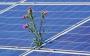 Fotovoltaico: IHS prevede 142 GW nel 2020