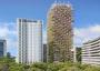 The Rainbow Tree: il grattacielo in legno con la doppia certificazione ambientale