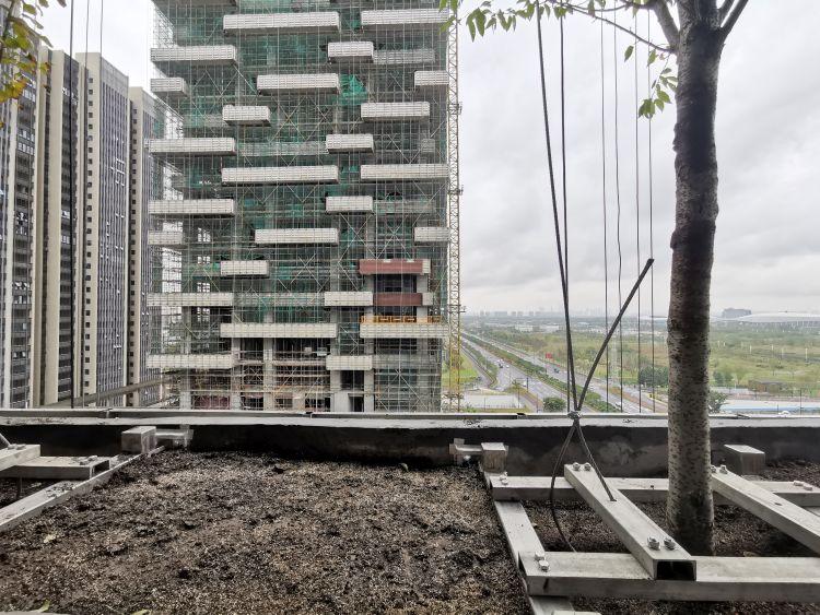 Iniziata la piantumazione degli alberi nel Bosco Verticale in Cina