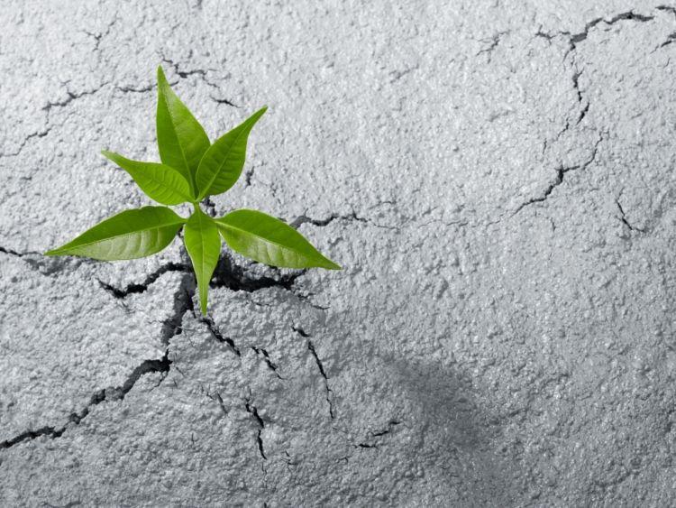 Dissesto idrogeologico: cosa si dovrebbe fare per ridurre il rischio