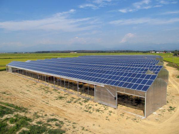 Serra fotovoltaica a Buronzo, realizzata con Inverter SMA