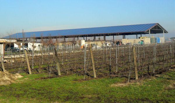 Un impianto fotovoltaico Conergy per una società agricola