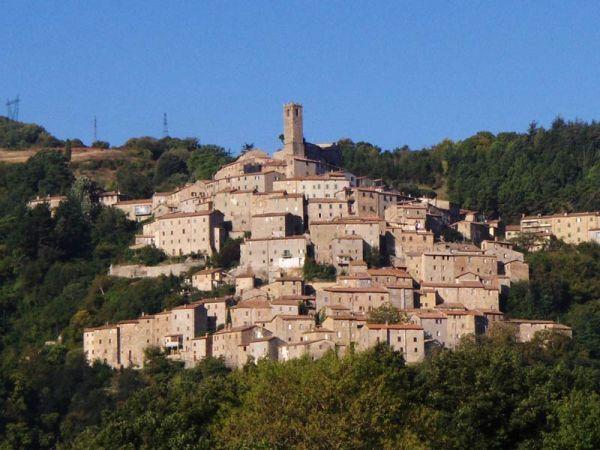 In Toscana il primo impianto al mondo che integra geotermia e biomassa