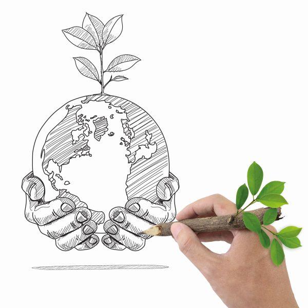 Certificazione green di prodotto. A che punto siamo?