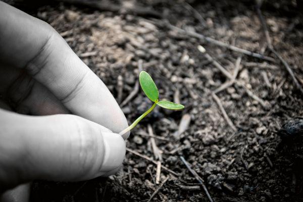 Vernici all'acqua bio per la massima sostenibilità ambientale