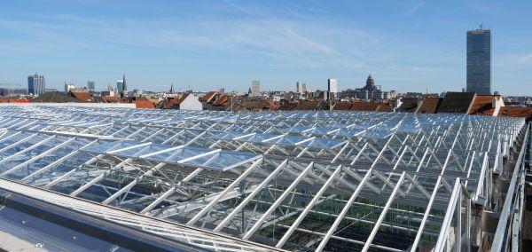 Una serra sul tetto per coltivare con il sistema dell'acquaponica