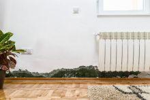 Umidità di risalita e muffa: come risolvere il problema prima dell'inverno
