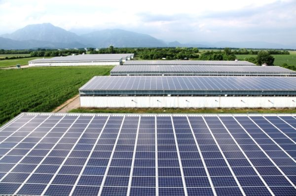 A Montereale Valcellina il nuovo allevamento che produce energia green