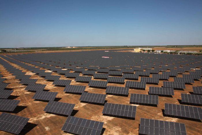 Ruotano come girasoli i pannelli fotovoltaici del nuovo impianto di Torre S. Susanna Brindisi