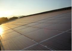 """IBC SOLAR supporta l'azienda agricola torinese """"Francia"""" verso la sostenibilità ambientale"""